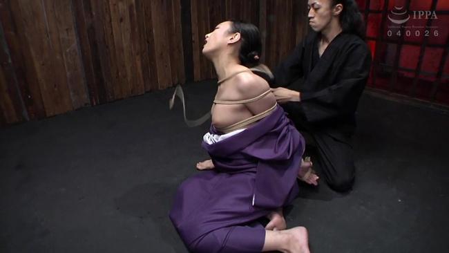 神納花 拷問淫夢 3