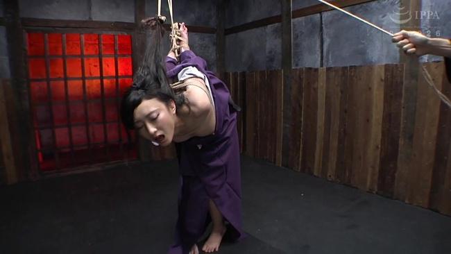 神納花 拷問淫夢 4
