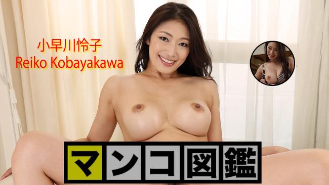 小早川怜子 - 小早川怜子 マンコ図鑑 av9898